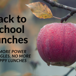 Back to school snack and lunch ideas